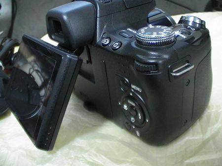 2010-03-23_10.jpg